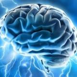 Tres de cada cuatro trastornos mentales están provocados por problemas en el desarrollo del cerebro