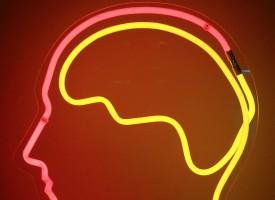 Descubren que la esquizofrenia está compuesta por ocho enfermedades