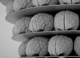 Asocian la disminución cognitiva de los pacientes con esquizofrenia a la pérdida de tejido cerebral