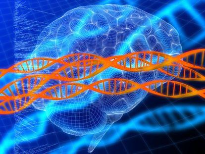 DNA_brains