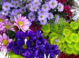 La primavera provoca un repunte de los estados de manía en los pacientes con trastorno bipolar