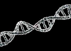 Encuentran mutaciones hereditarias genéticas relacionadas con el trastorno bipolar