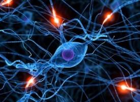 La optogenética aumenta la esperanza en el combate contra las enfermedades mentales