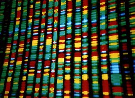 Descubren las primeras pistas genéticas acerca de la causa de la depresión