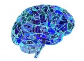 Elaboran el primer mapa de alteraciones cerebrales en pacientes con trastorno bipolar
