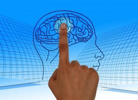 Interrupciones en el centro de navegación espacial del cerebro provocan déficit de memoria en pacientes con esquizofrenia