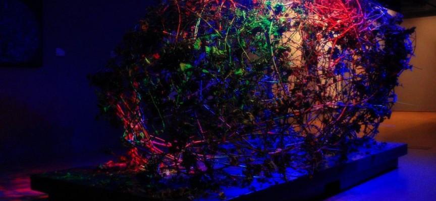 La esquizofrenia afecta a más regiones del cerebro de lo que se pensaba