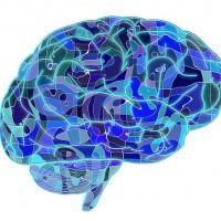 Identifican el mecanismo que reprime los pensamientos no deseados