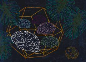 La estimulación multisensorial permite reducir fármacos para la demencia