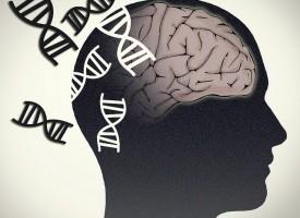 4 hábitos saludables para retrasar el Alzheimer