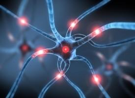 La OMS pide intensificar la atención de los pacientes con epilepsia