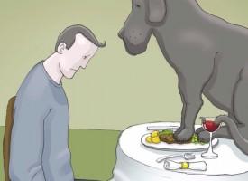 """Vídeo de la OMS: """"Tenía un perro negro, se llamaba depresión"""""""