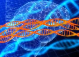 Recogerán muestras de pacientes con esquizofrenia de todo el mundo para mejorar los tratamientos