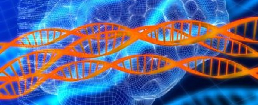 Estudio con imágenes del cerebro mejora la comprensión de la esquizofrenia refractaria