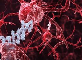 El origen del alzhéimer se busca en la ingravidez del espacio