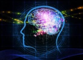 Imágenes cerebrales muestran cómo los hermanos de pacientes con esquizofrenia esquivaron la enfermedad