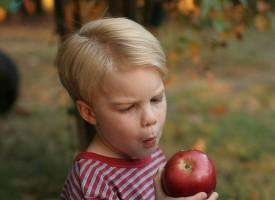 Los niños caprichosos al comer tienen más probabilidades de sufrir ansiedad y otros trastornos