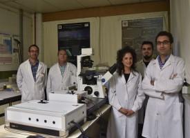 Científicos de Granada diseñan un método para el diagnóstico precoz de alzheimer