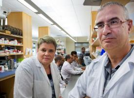"""Caruncho: """"Nuestro objetivo es desarrollar un test que permita evaluar cual es la mejor medicación para cada paciente"""""""