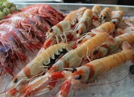 Comer marisco de forma moderada ralentiza el Alzheimer