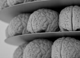 Científicos encuentran un gen culpable de aumentar el riesgo de sufrir esquizofrenia