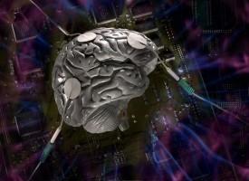 Descubren las conexiones cerebrales por qué las que la ansiedad hace que el mundo parezca más peligroso
