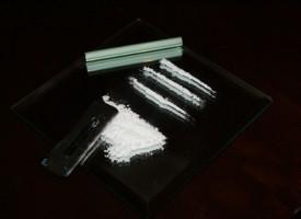 La cocaína destruye neuronas en el lóbulo frontal del cerebro causando graves alteraciones de comportamiento