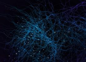 Identificada una proteína clave en la pérdida de memoria en el alzhéimer