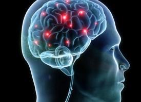 La estimulación cerebral profunda podría ser alternativa contra la ansiedad refractaria