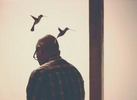 Factores biológicos que predisponen a la violencia y estigma asociado a los trastornos mentales