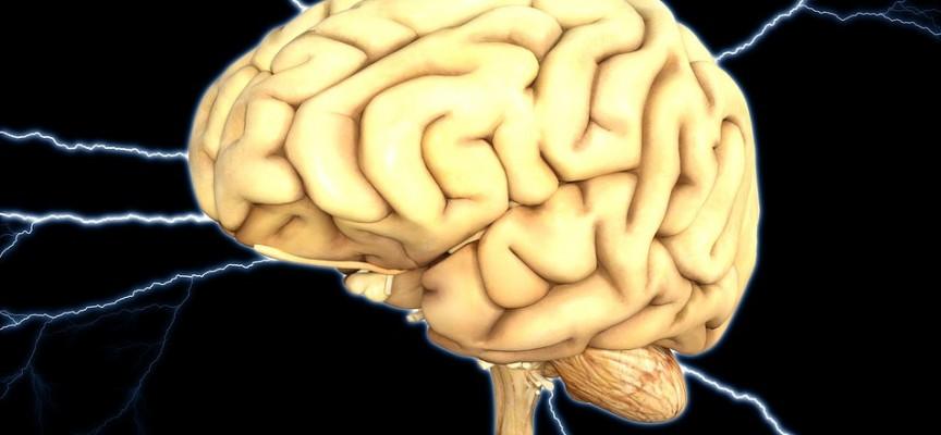 El cerebro es capaz de protegerse ante el riesgo biológico de sufrir trastorno bipolar