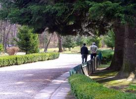Consejos para los cuidadores de los enfermos de Alzheimer