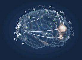 El gen APOE-e4 aumenta las probabilidades de padecer Alzheimer