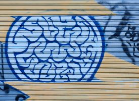 Los escáneres cerebrales pueden ayudar a diagnosticar trastornos mentales