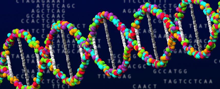 Identifican tres categorías de genes implicados en el desarrollo del Alzheimer