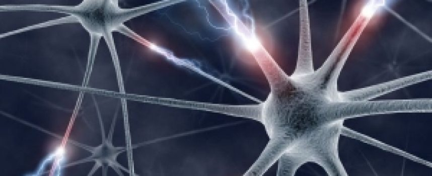 Una nueva técnica podría ser capaz de leer la mente