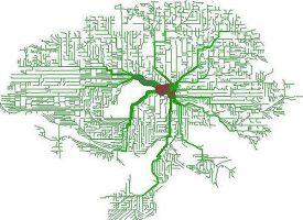 Descubren las neuronas que reescriben los recuerdos traumáticos