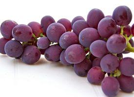 Un compuesto de las uvas protege contra alteraciones celulares del alzhéimer