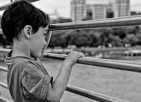 El autismo y el TDAH son alteraciones funcionales de la corteza cerebral