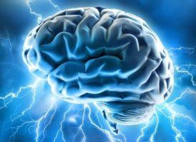Recompensa y malestar están estrechamente vinculadas en el cerebro